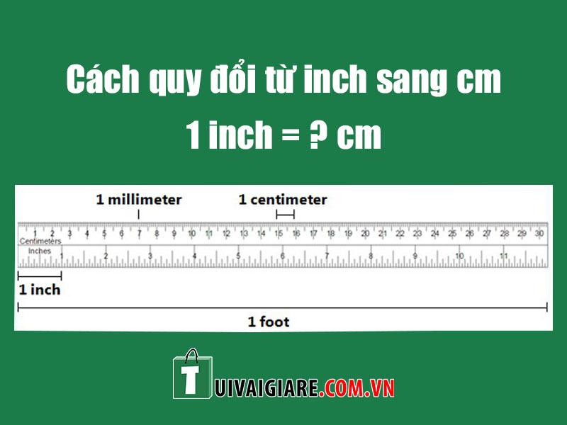 doi inch sang cm
